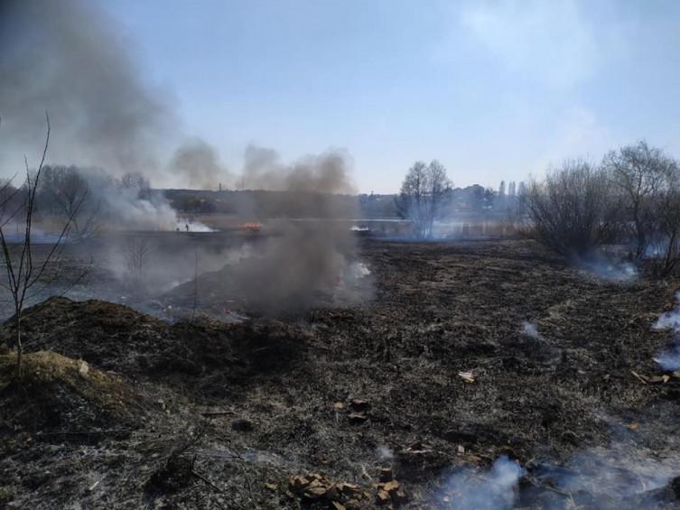 В Виннице возле Вишенского озера произошел масштабный пожар (фото), фото-7