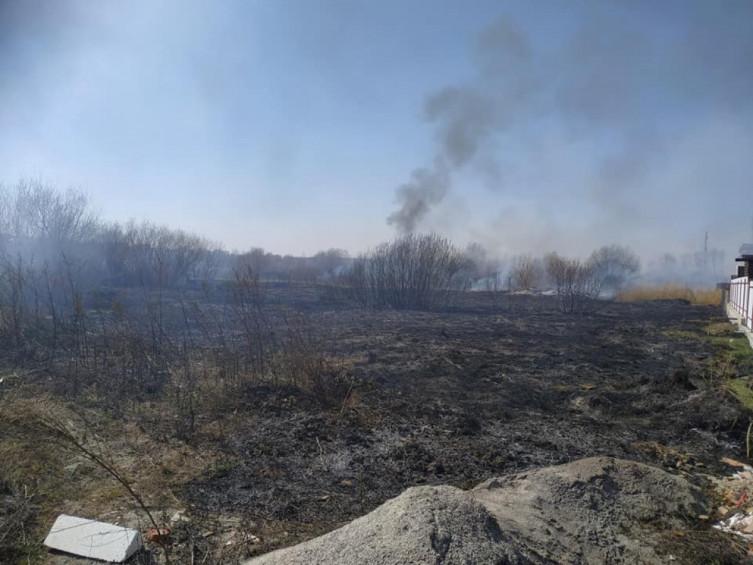 В Виннице возле Вишенского озера произошел масштабный пожар (фото), фото-8
