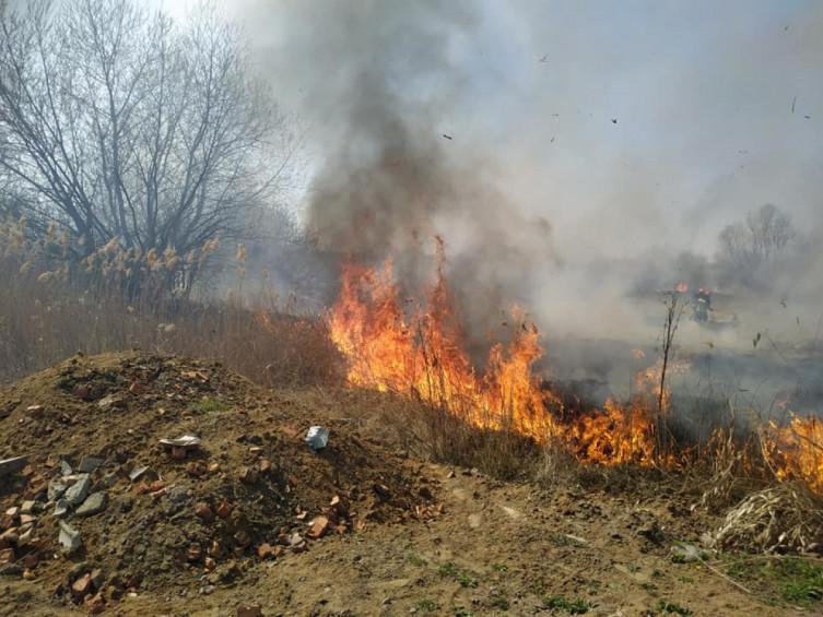 В Виннице возле Вишенского озера произошел масштабный пожар (фото), фото-4