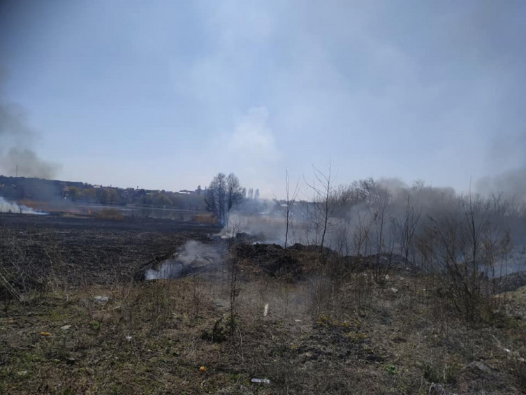 В Виннице возле Вишенского озера произошел масштабный пожар (фото), фото-11