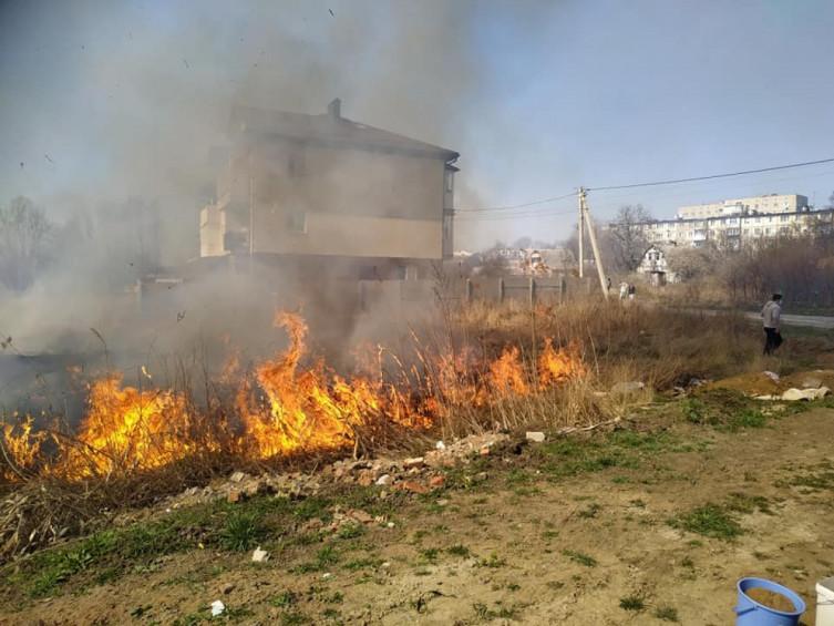 В Виннице возле Вишенского озера произошел масштабный пожар (фото), фото-3