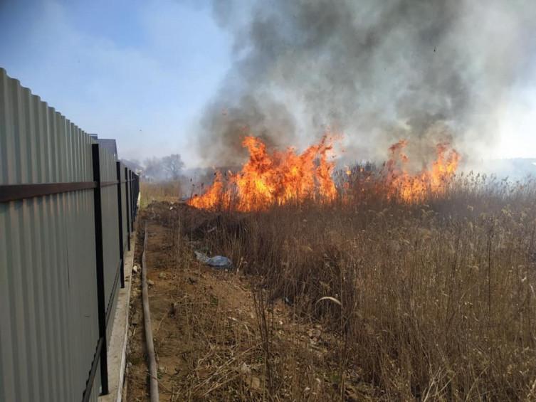 В Виннице возле Вишенского озера произошел масштабный пожар (фото), фото-5