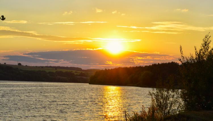 водосховище в Степашках