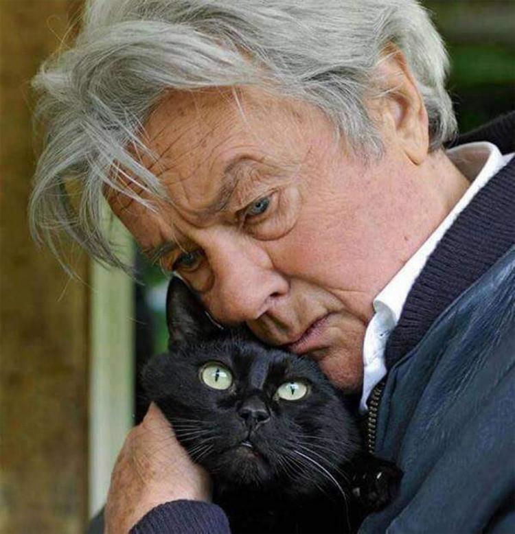 Великий любитель котів Ален Делон. Фото: соцмережі