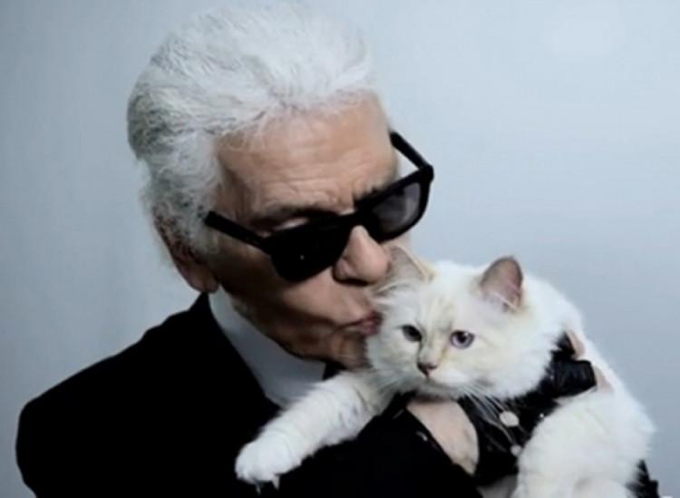 Карл Лагерфельд з кішкою. Фото: соцмережі